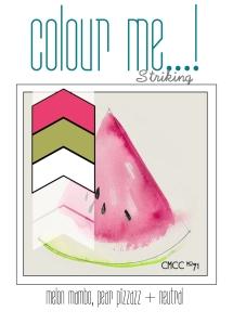 CMCC Full Graphics-019